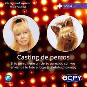 Baila Conmigo Paraguay busca perros parecidos a sus dueños Foto: Facebook